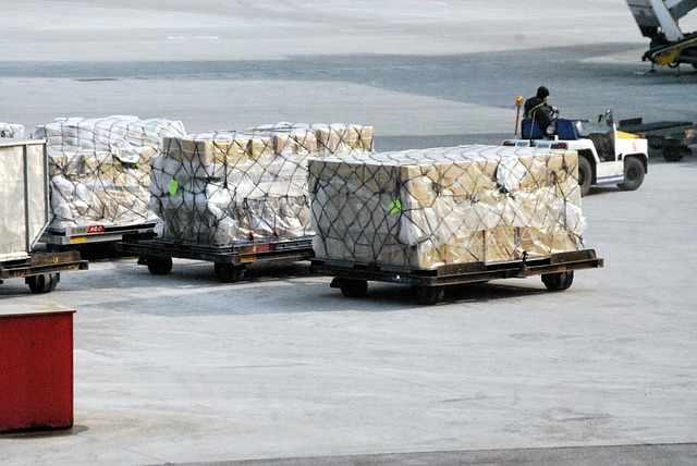 българия в световния износ